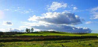 Schöne grüne Landschaft mit Wolken auf dem blauen Himmel Stockfoto