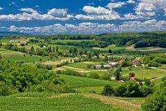 Schöne grüne Landschaftlandschaftsim Frühjahr Zeit Stockfotografie