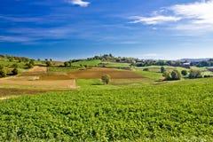 Schöne grüne Natur unter blauem Himmel Lizenzfreies Stockfoto