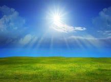 Schöne grüne Rasenfläche mit Sonnenglanz auf klarem blauem Himmel Stockfotografie