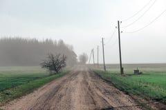 Schöne grüne Wiese im schweren Nebel Stockbilder