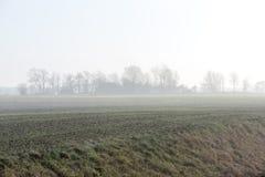 Schöne grüne Wiese im schweren Nebel Lizenzfreie Stockfotografie