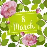 Schöne Grußkarte mit dem Feiertag vom 8. März, internationalem Frauen ` s Tag mit Frühlingsrosen und Beschriftung Stockfoto