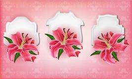 Schöne Gutscheine mit rosa Lilie Stockfotografie