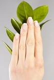 Schöne Hände mit Nägeln der französischen Maniküre Stockfotos