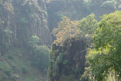 Schöne Hügel mit Bäumen stockfotos