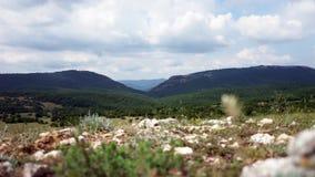 Schöne Hügel und Waldpanorama stock footage