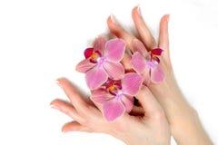 Schöne Hand mit französischer Maniküre des Badekurortnagels Stockfotos