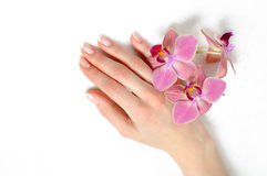 Schöne Hand mit französischer Maniküre des vollkommenen Nagels lizenzfreies stockfoto
