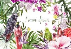 Schöne helle bunte Aquarellkarte mit tropischen Blättern und Blumen, Vögel Lizenzfreies Stockbild