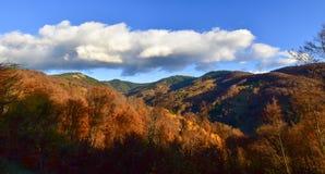 Schöne Herbst-Szene lizenzfreies stockbild