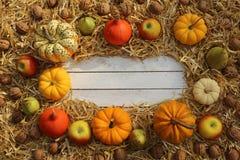Schöne Herbstdekoration mit Kürbisen lizenzfreies stockbild