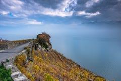 Schöne Herbstfarben auf den Terrassen der Lavaux-Weinberge in der Schweiz und der nebeligen, dunklen drohenden Wolken über Genfer lizenzfreie stockfotos
