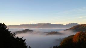 Schöne Herbstfarben und -nebel im Wald Lizenzfreies Stockbild