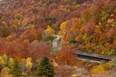 Schöne Herbstfarbjahreszeit an Hachimantai-Bereich Stockfotos