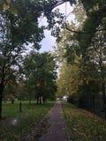 Schöne Herbstgasse an einem bewölkten Tag stockfotos