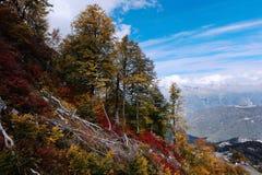 Schöne Herbstgebirgslandschaft Stockfotografie