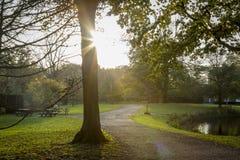 Schöne Herbstlandschaft Stockbilder