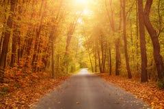 Schöne Herbstlandschaft Stockfotografie