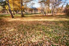 Schöne Herbstlandschaft Lizenzfreie Stockfotografie
