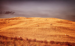 Schöne Herbstlandschaft Lizenzfreie Stockbilder
