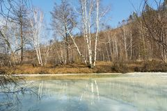 Schöne Herbstlandschaft Bäume werden im gefrorenen Fluss reflektiert Lizenzfreie Stockfotografie