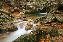 Schöne Herbstlandschaft mit Gebirgsfluss stockbild
