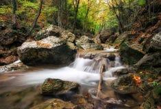 Schöne Herbstlandschaft mit Gebirgsfluss lizenzfreies stockbild