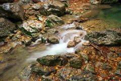 Schöne Herbstlandschaft mit Gebirgsfluss lizenzfreie stockbilder