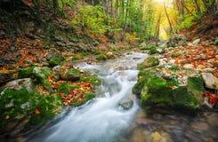 Schöne Herbstlandschaft mit Gebirgsfluss, Steine lizenzfreies stockfoto