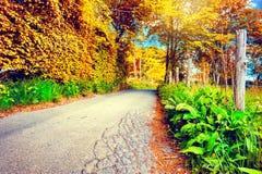 Schöne Herbstlandschaft mit Landstraße Stockbilder