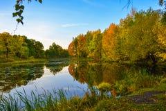 Schöne Herbstlandschaft See-, Gelbe und Rotebäume durch den See Reflexion im Wasser Blauer Himmel Sonniger Herbsttag stockfotos