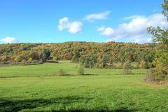 Schöne Herbstnatur Stockfotografie