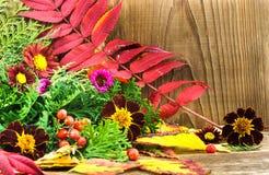 Schöne Herbstzusammensetzung auf hölzernem Hintergrund Stockbilder