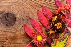 Schöne Herbstzusammensetzung auf hölzernem Hintergrund Stockfoto