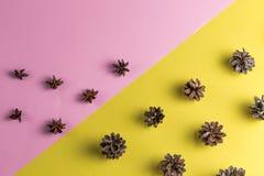 Schöne Herbstzusammensetzung für Aromatherapie stockfotos