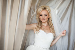 Schöne herrliche stilvolle blonde Braut unter Tulle nahe einem windo Stockbild
