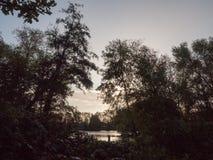 Schöne hintergrundbeleuchtete schwarze Baumschattenbilder vor See sonnen b Lizenzfreies Stockbild