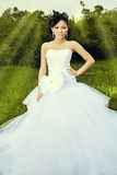 Schöne Hochzeit Stockfotos