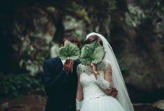 Schöne Hochzeitspaare bleiben auf Stein des Flusses in den szenischen Bergen lizenzfreie stockfotografie