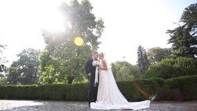 Schöne Hochzeitspaare, die in den Park gehen Braut mit langem weißem Kleid und stilvollem Bräutigam stock video footage