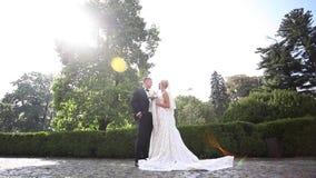 Schöne Hochzeitspaare, die in den Park gehen Braut mit langem weißem Kleid und stilvollem Bräutigam stock footage
