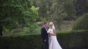 Schöne Hochzeitspaare, die in den Park gehen Braut mit langem weißem Kleid und stilvollem Bräutigam stock video