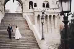 Schöne Hochzeitspaare, herrliches Treppenhändchenhalten und -blicke oben miteinander kletternd lizenzfreies stockbild