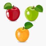 Schöne Illustration von Rotem, grün, reifer Apfel des Gelbs lokalisiert auf weißem Hintergrund Stockbild