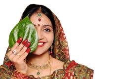 Schöne indische Braut in der roten Sari, die ein Blatt anhält. Stockfotografie