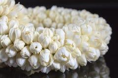 Schöne Jasmingirlande von Blumen Stockfotos