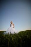 Schöne junge blonde Braut Lizenzfreies Stockbild