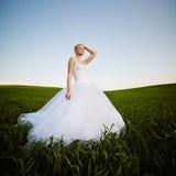 Schöne junge blonde Braut Stockfotos