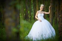 Schöne junge blonde Braut Lizenzfreie Stockfotos